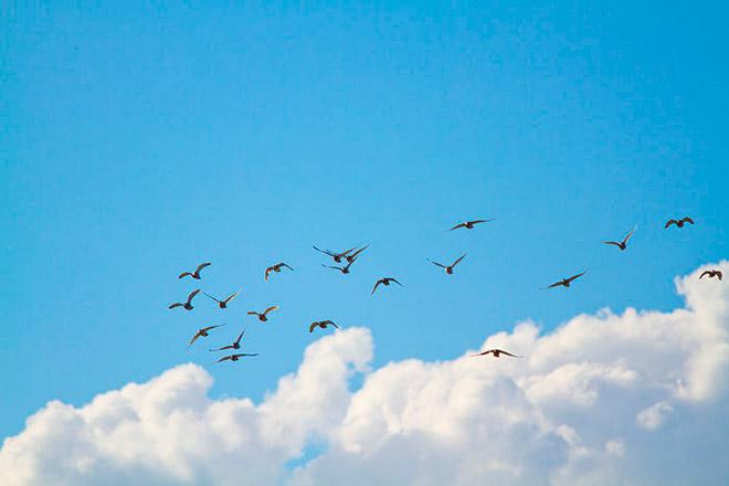 20130914『9.11南三陸の海に思いを届けよう』