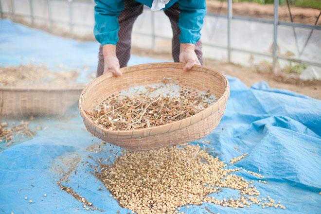 南三陸ビーンズくらぶ 豆腐作り体験