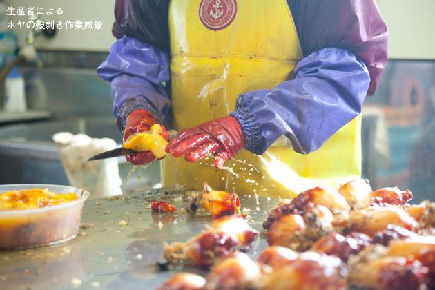 ホヤの生産者による、ホヤの殻剥き作業風景。新鮮なホヤであればあるほど、包丁を入れた瞬間に海水が吹き出す。
