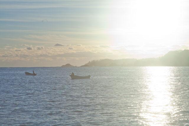 南三陸タコ漁