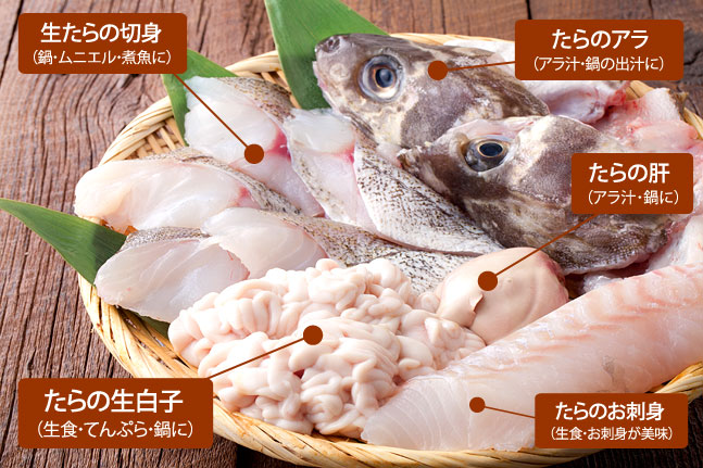 真鱈の部位