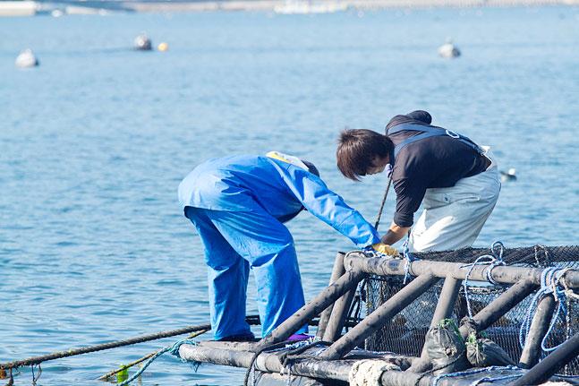 南三陸の漁師