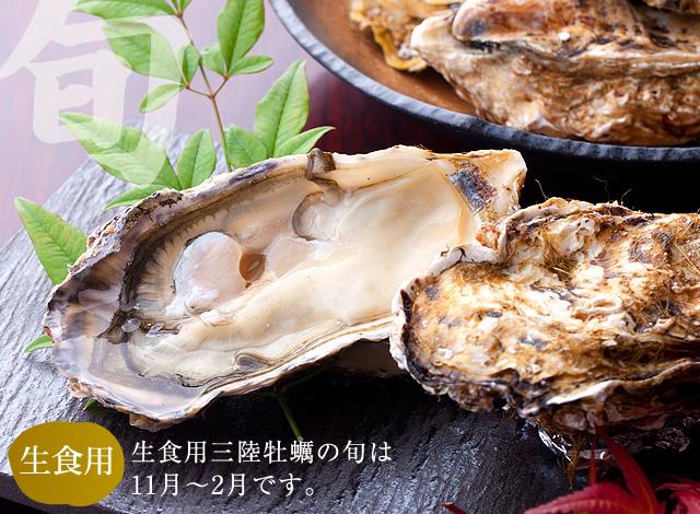 生食用 三陸牡蠣の旬は11月〜2月です