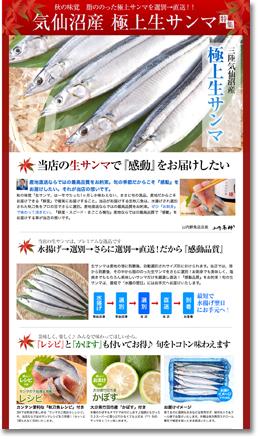 生秋刀魚(サンマ)特集