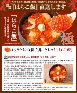 本場宮城県から自宅で楽しめる『はらこ飯セット』を直送!はらこ飯の取り寄せ・通販なら山内鮮魚店