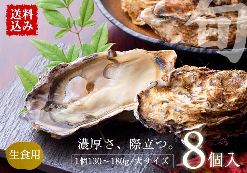 【送料込み】三陸産『殻付真牡蠣(カキ)』 大サイズ8個入 ※カキレシピ・専用ナイフ・軍手付