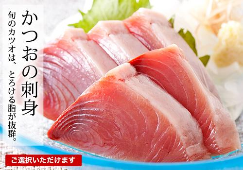 三陸産「釣り鰹(かつお)」1筋 ※お刺身・たたき選べます