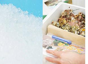 お中元ギフト2017|活きたまま届く海産物専門店の技術