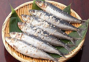 真イワシ塩麹漬(3尾)