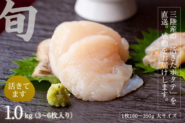 活ホタテ1.0kg(4〜8枚入り)