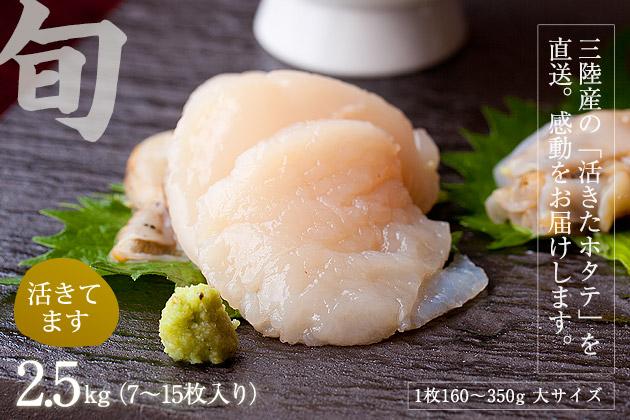 活ホタテ2.5kg(10〜18枚入り)