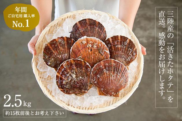 【送料込み】三陸産殻付活ホタテ 約2.5kg(約15枚前後)帆立ナイフ・レシピ付 ※約3~4人前