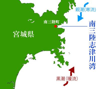 南三陸志津川湾の地形