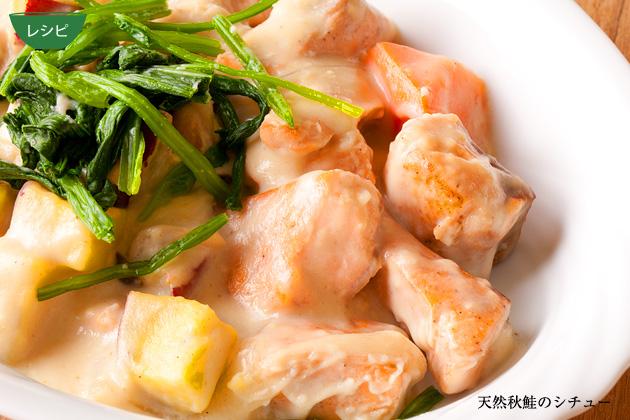 レシピ 天然秋鮭のシチュー