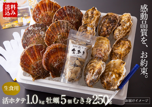【送料込み】三陸産活ホタテ 約1.0kg(4~8枚)・牡蠣大サイズ5個・生カキむき身300g ※各種レシピ・ナイフ・軍手付 《クール冷蔵発送》