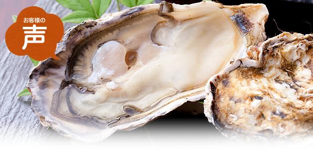 殻付き牡蠣(カキ) お客様の声