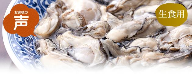生食用生牡蠣(むき身) お客様の声