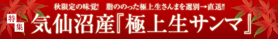 秋の味覚 脂ののった極上さんまを選別→直送!!気仙沼産 極上生サンマ特集