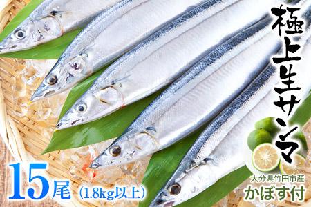 気仙沼産生さんま(大サイズ)15尾 2.1kg以上