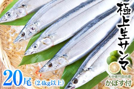 気仙沼産生さんま(大サイズ)20尾 2.8kg以上