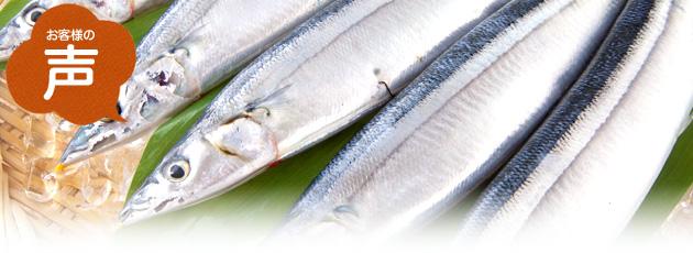 生秋刀魚 お客様の声