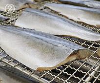 鯖の冷燻(さばのスモーク)桜チップを使用 冷燻製法でしっとり食感に