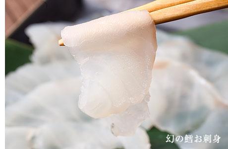 鱈(たら)の生白子