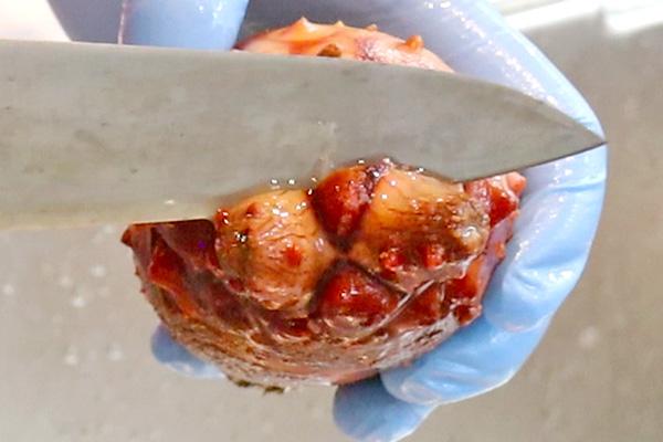 殻付きホヤのさばき方レシピ1