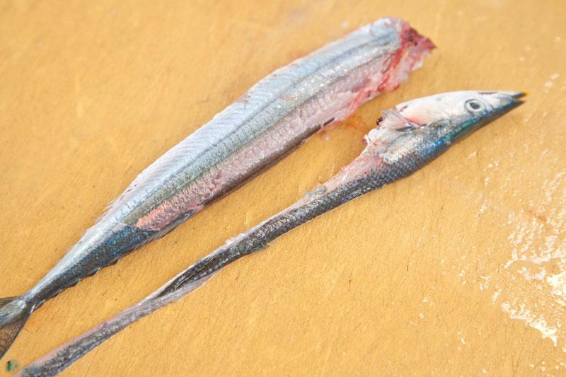 こちらが生さんまの皮を剥いだ状態です。脂がのった秋刀魚は簡単に皮が剥がれますので頑張って下さい。