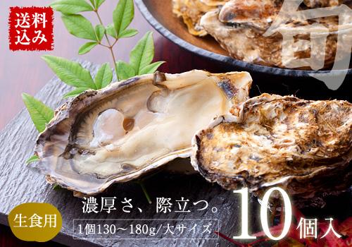 【送料込み】三陸産『殻付真牡蠣(カキ)』 大サイズ10個入 ※カキレシピ・専用ナイフ・軍手付