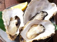電子レンジで簡単旬の殻付き蒸し牡蠣レシピです。