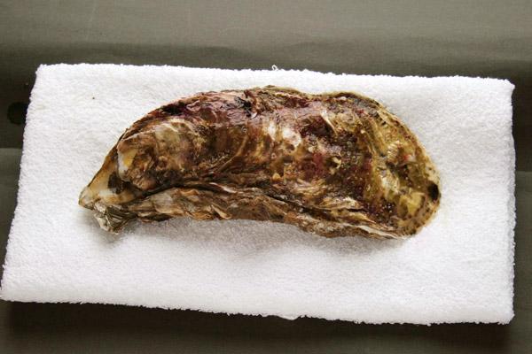 殻付き牡蠣(かき)のむき方・さばき方レシピ1