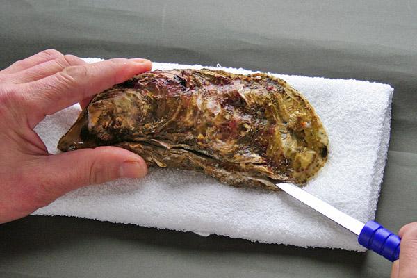 殻付き牡蠣(かき)のむき方・さばき方レシピ3