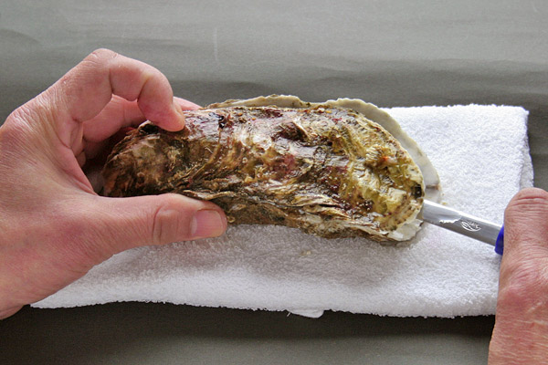 殻付き牡蠣(かき)のむき方・さばき方レシピ4