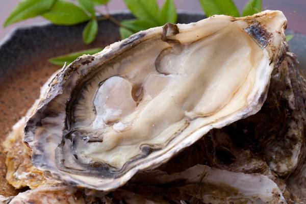殻付き牡蠣(かき)のむき方・さばき方レシピ6