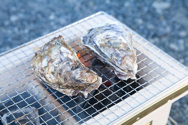 焼き牡蠣の作り方(七輪編)1まず七輪に殻付牡蠣(かき)を並べましょう。
